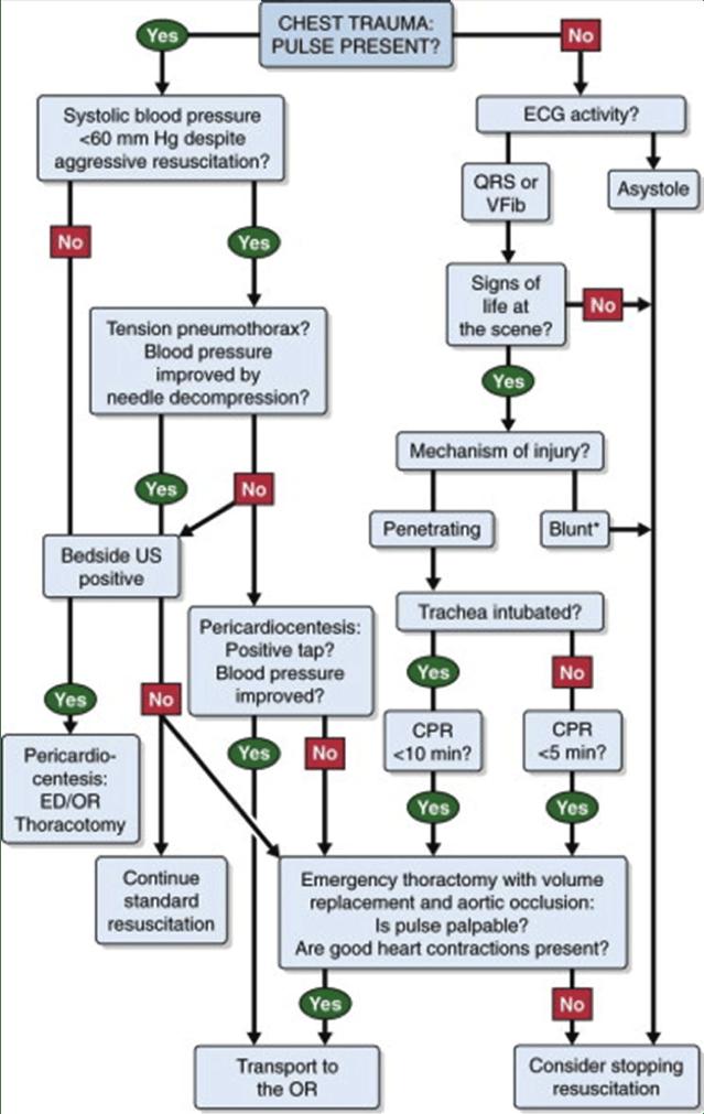 emergency thoracotomy algorithm