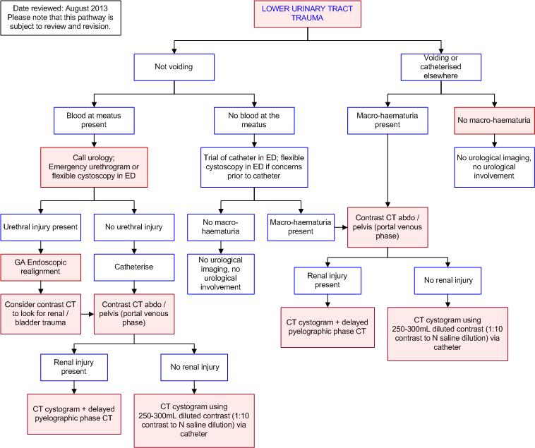 Cme 51115 Urethral And Bladder Traumatic Injury