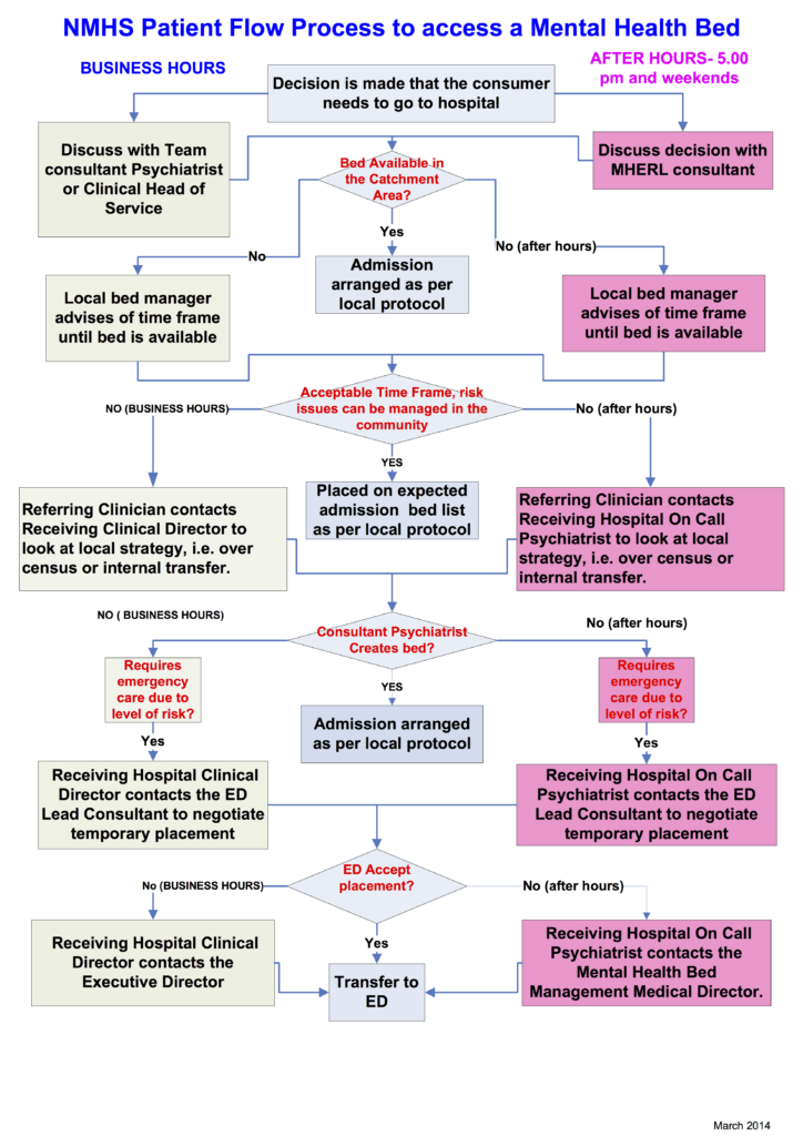 Visio-NMHS Updated Bedflow Chart 260314