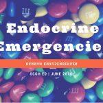 CME 09/06/16 – Endocrine Emergencies