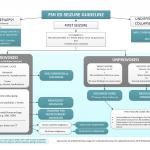 FSH ED Seizure Guideline
